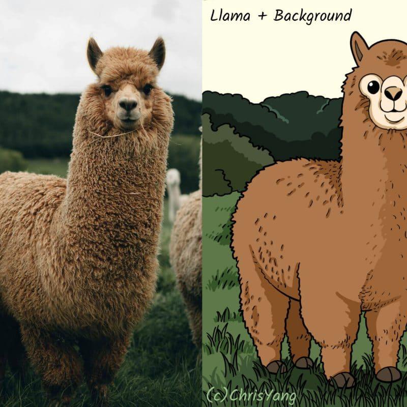 Draw A Llama/Alpaca!